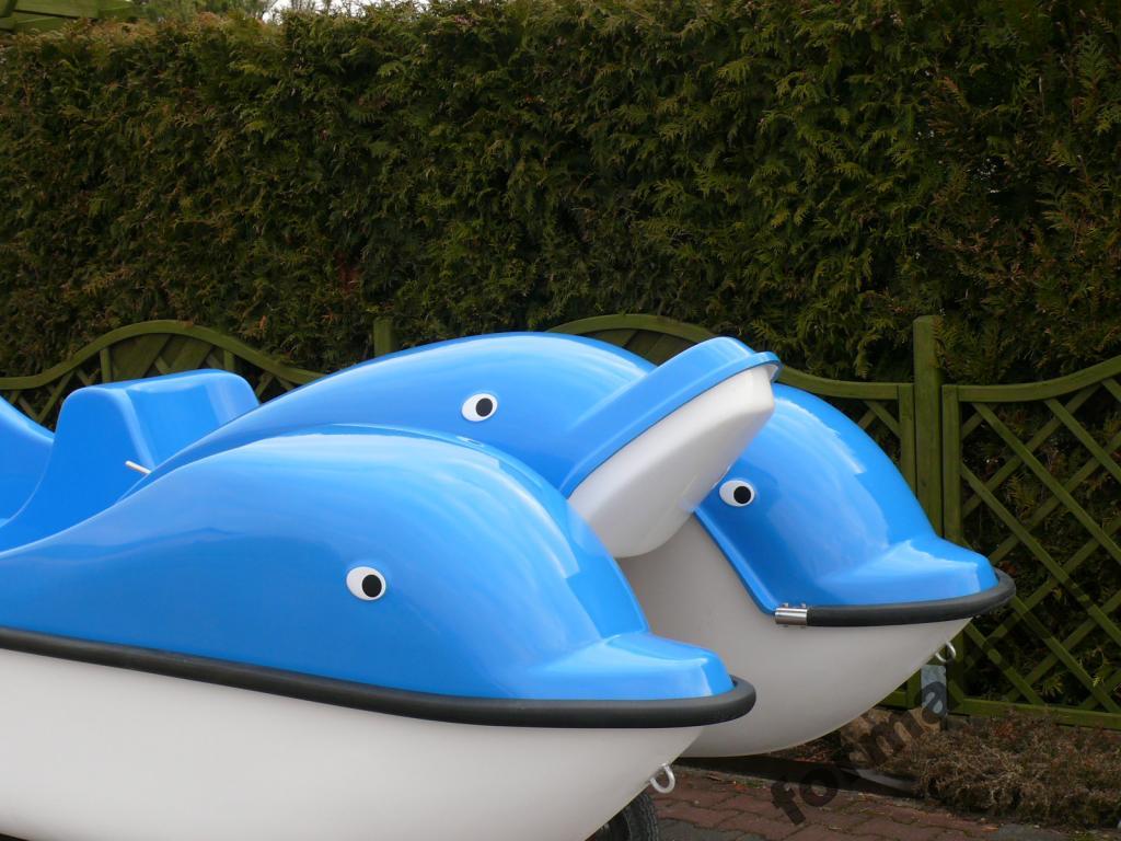 Dolphin Garbi Water Bike