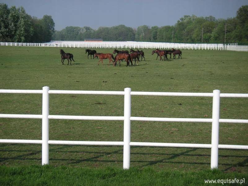 EquisAfe - elektrický plot pre kone
