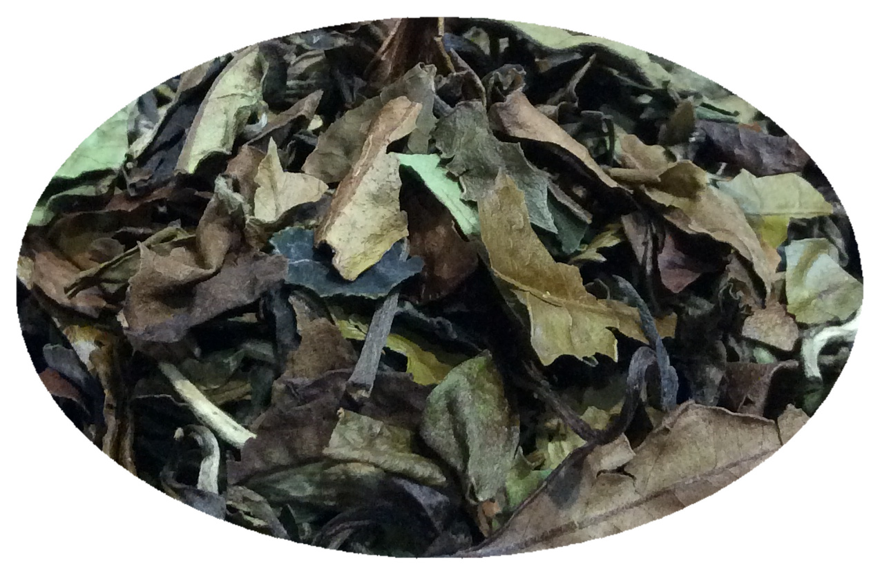 Biely čaj Pai Mu tan-1 kg