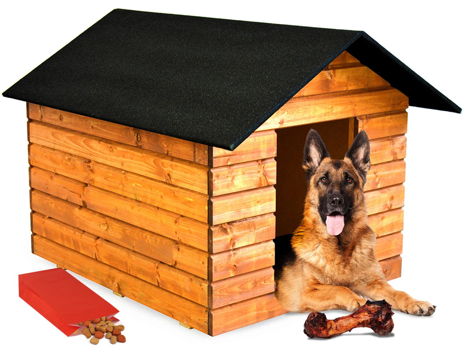 карликовых картинка собака и дом подушек