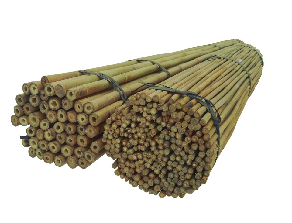 BAMBUSOVÉ TYČE 150 cm 20/22 mm /100 Ks, bambus