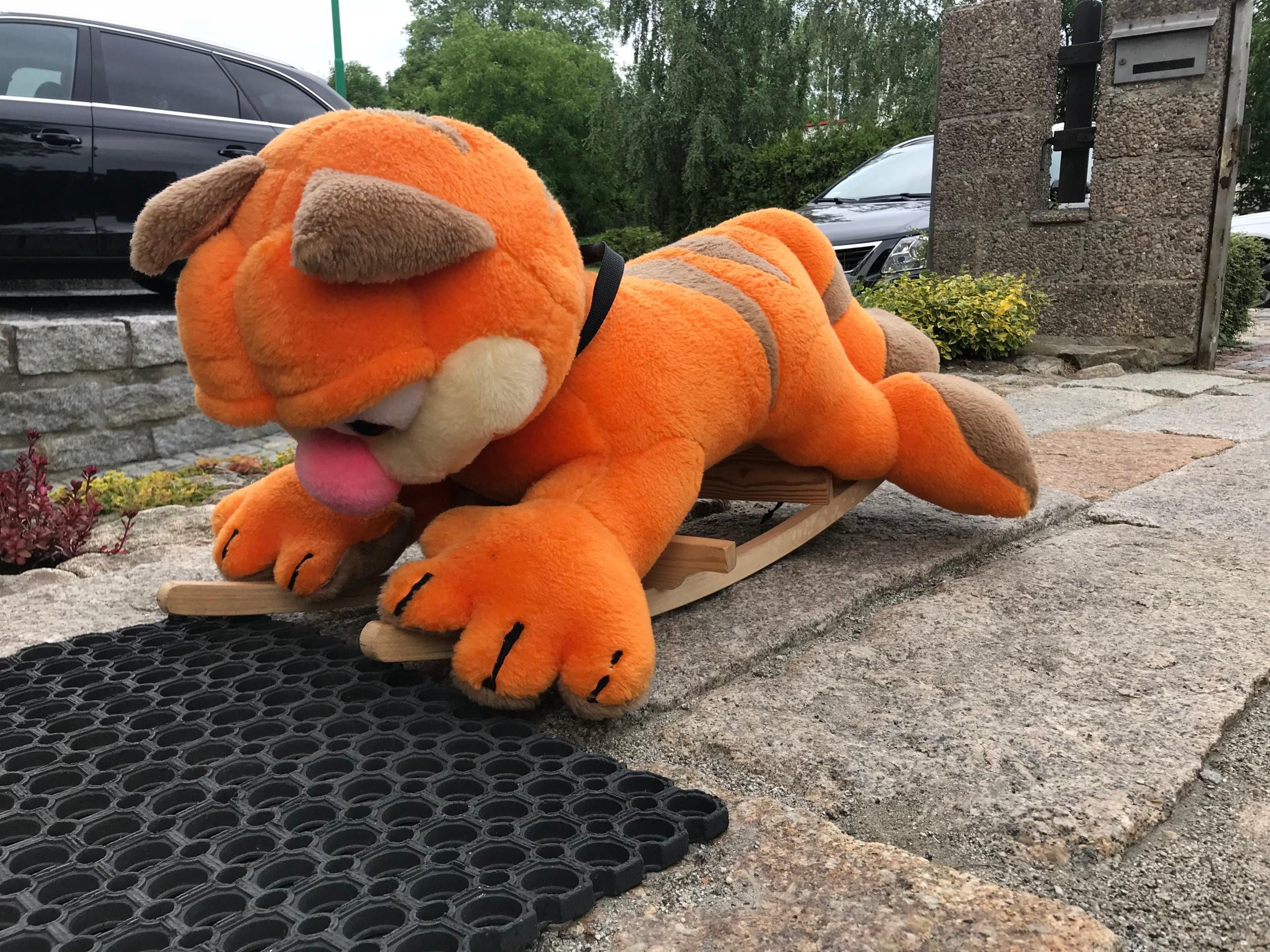 Bujak Kot Na Biegunach Garfield Kot Na Płozach 7411444671