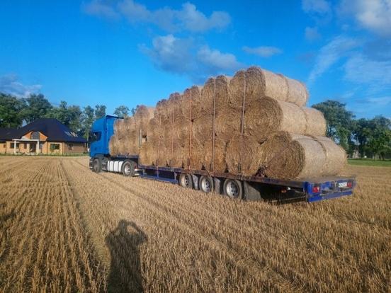 Niesamowite Transport slomy, maszyn rolniczych i budowlanych - 7505976511 XP55