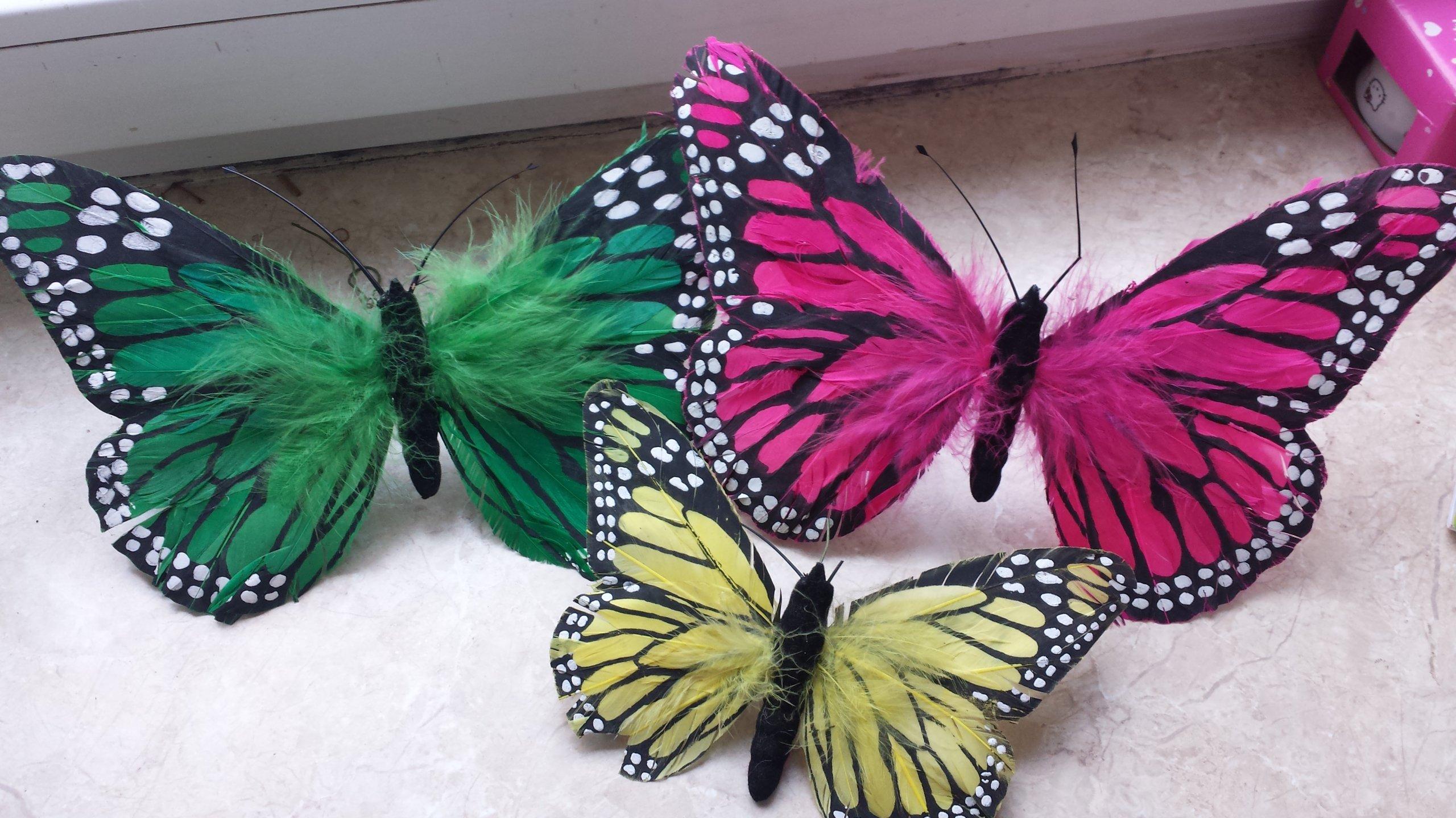 Zestaw 3 Motyli Wykonanych Z Piór Dekoracja 7078092748
