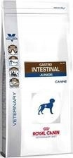 Royal Canin Gastro Intestinal 14kg Karma