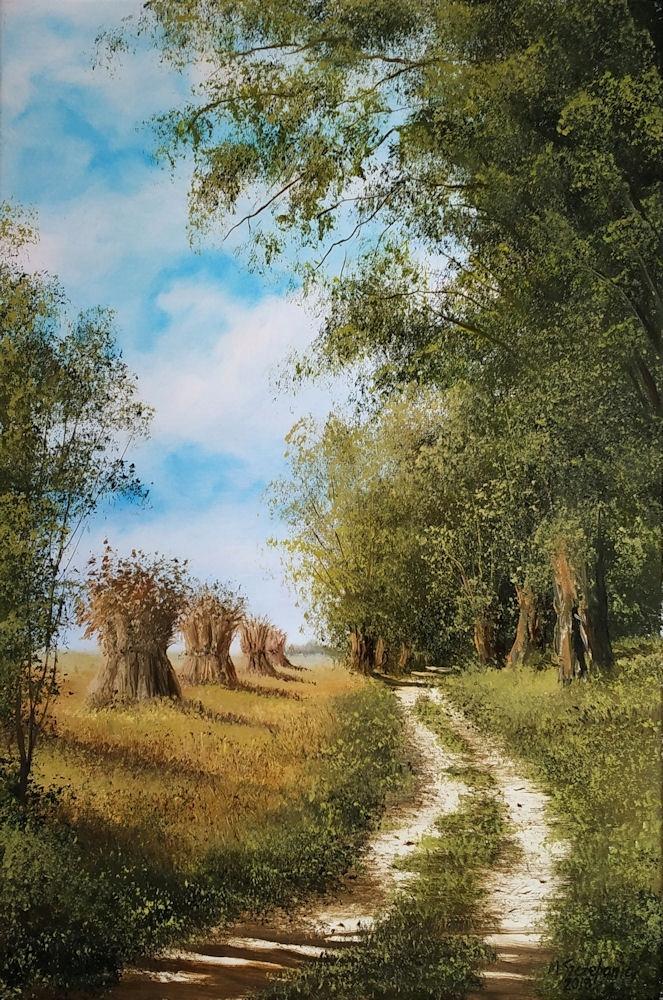 M.Szczepaniak `Polna droga` 40x60