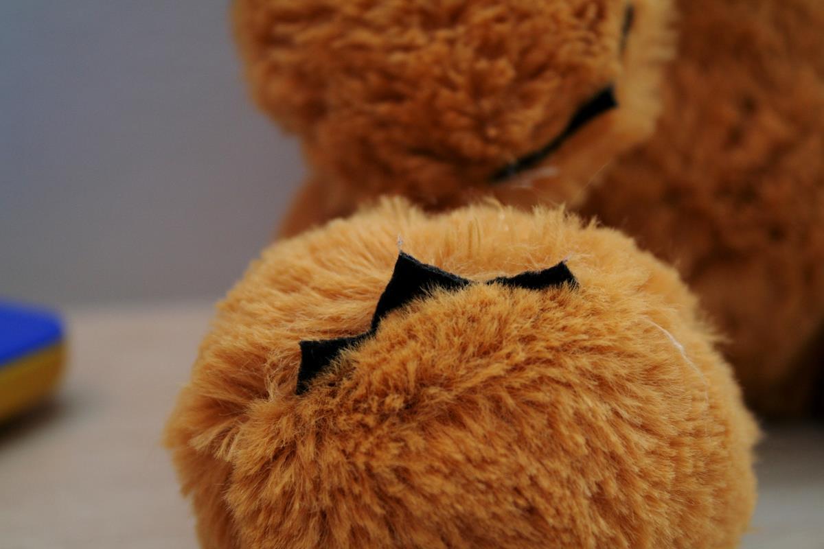 photo 2a Claws