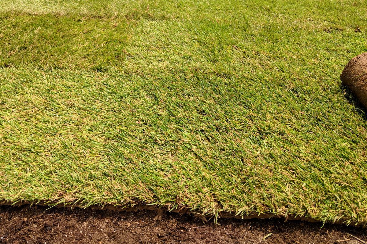 položenie trávy z role