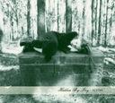 HIDDEN BY IVY - Acedia CD 2015 art pop ghost rock