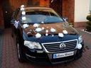 Dekoracja samochodu na samochód XXXL ślub KOLORY