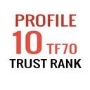Pozycjonowanie SEO - Linki Trust Rank 10 x PR6-PR9
