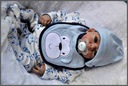 Syn urodzony późną zimą-wiosną ok 120szt! KONKRETY
