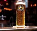 RISING SONS Brewery szklanka Pint IRLANDIA