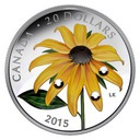 RUDBEKIA - kryształowe krople rosy 20 CAD 2015