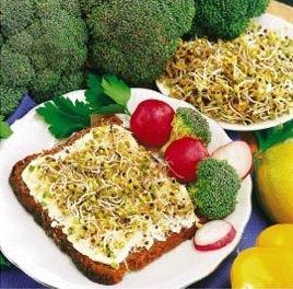 Semená brokolice na klíčky 250g