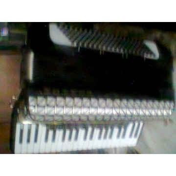akordeon president 120 basów Hohner