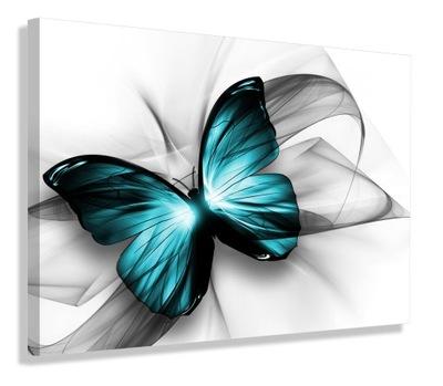 ИЗОБРАЖЕНИЕ instagram Серый Бабочка 120х80 ХОЛСТ