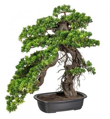Umelé BONSAI strom PODOCARPUS 65x50cm