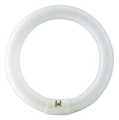 MASTER TL-E Circular Super 80 32W/840 świetlówki l