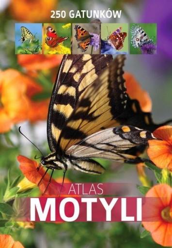Atlas motyli 250 gatunków Twardowska Kamila, Tward