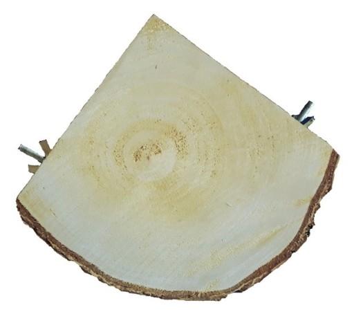 Półka Drewniana Narożna Z Brzozy Dla Gryzoni