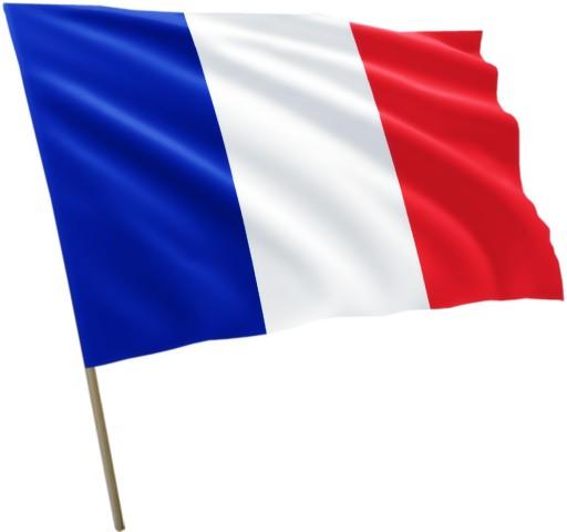 Znalezione obrazy dla zapytania flaga francji