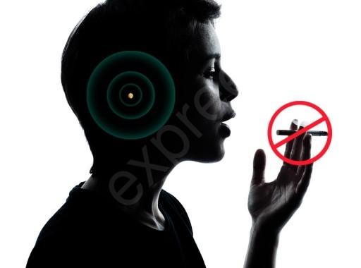 02b885b99 NIL SMOKE NILSMOKE ANTYNIKOTYNOWY MAGNES NA UCHO 7257628772 - Allegro.pl